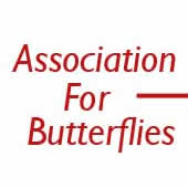 Funeral butterflies, memorial butterflies, butterflies for funerals and memorials, live butterflies for memorials and ceremonies