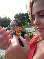 Butterfly release for memorial service in Boynton Beach Florida.